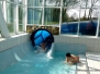 Schwimmfest April 2011